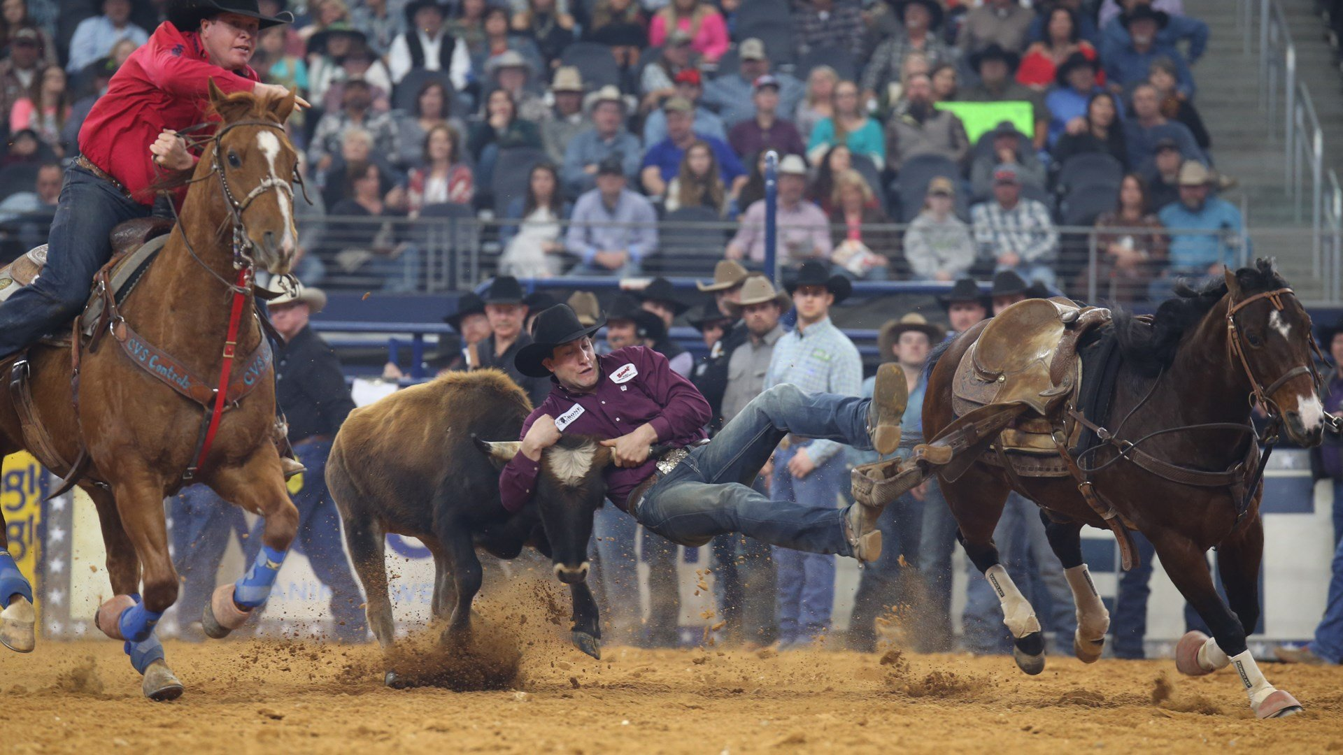 Steer Wrestling Qualifiers 2020