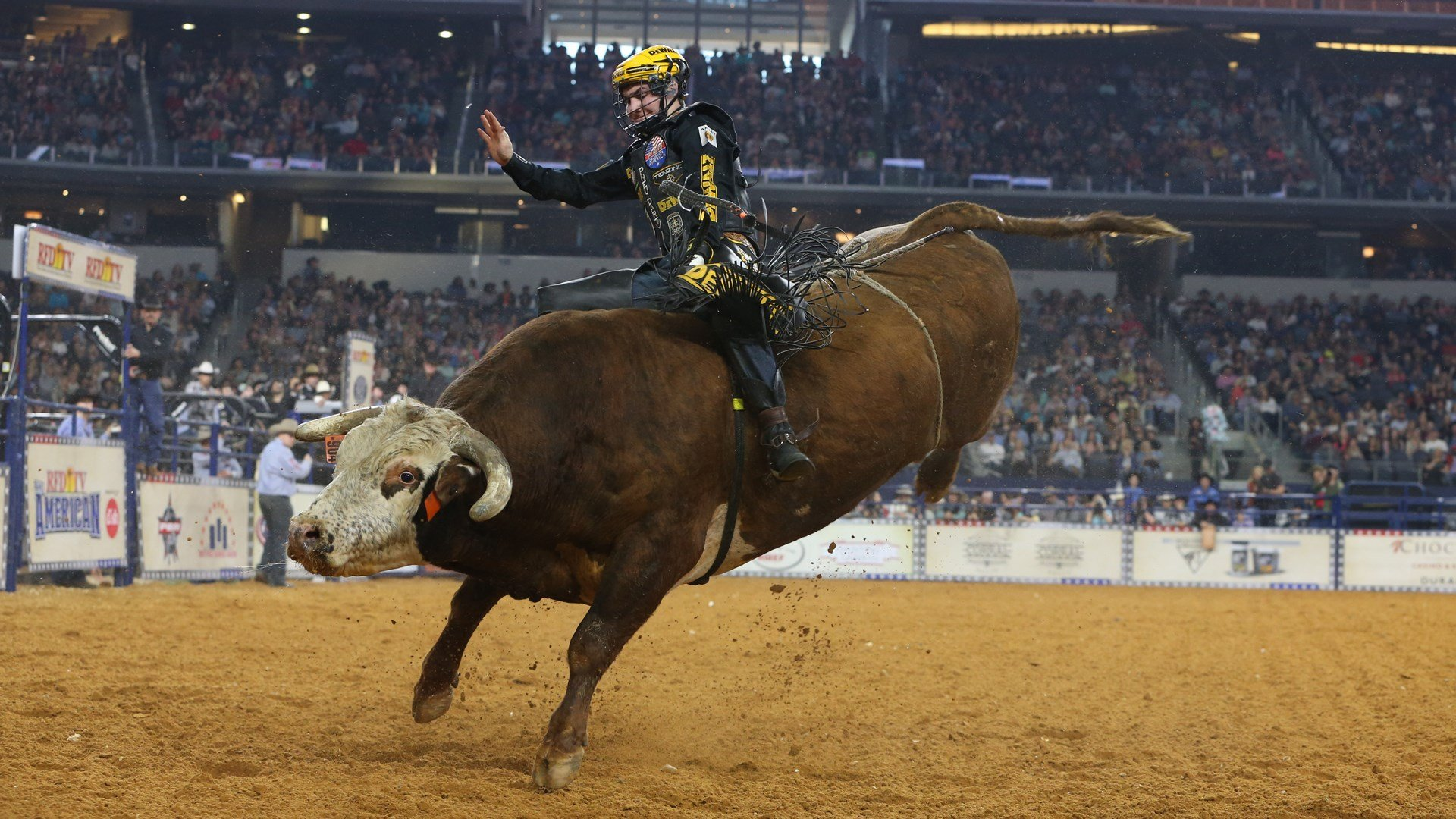 Bull Riding Qualifiers 2020